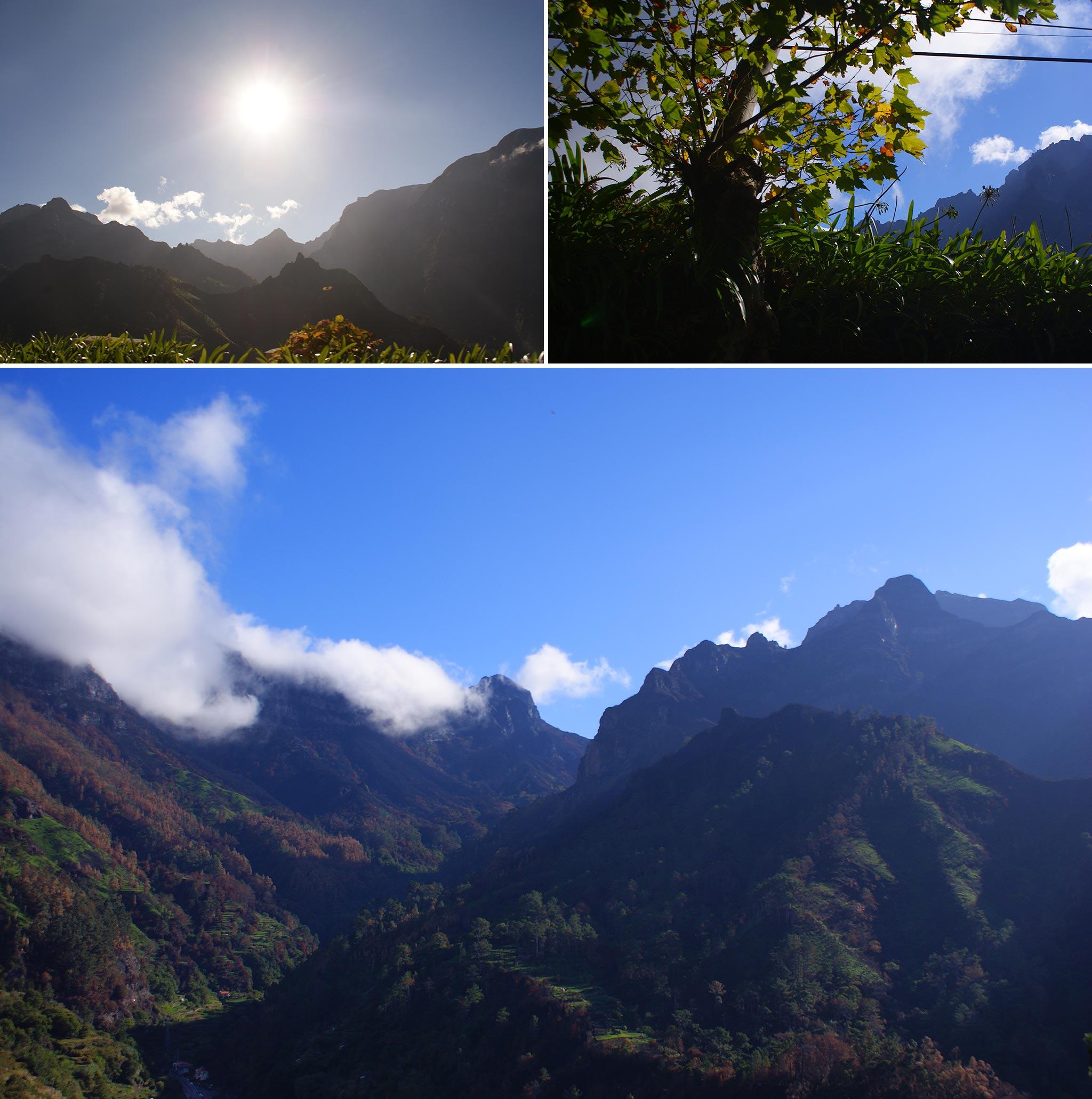 Madeira Impressions II